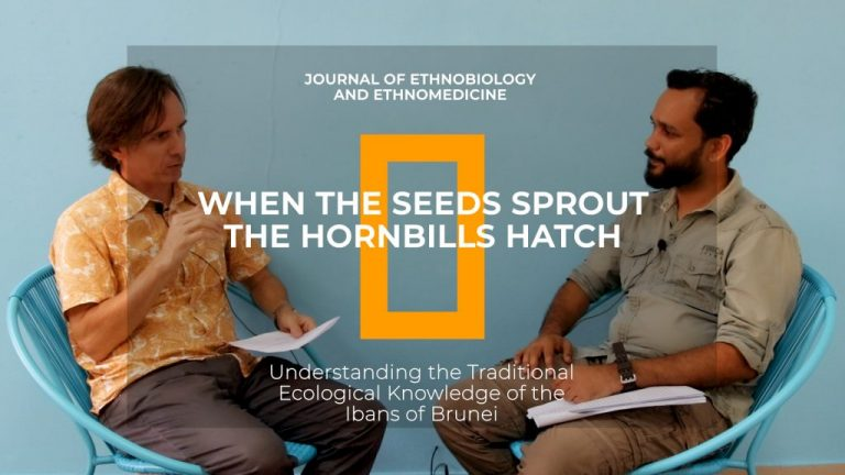 Interview with Merlin Franco on Hornbill Research
