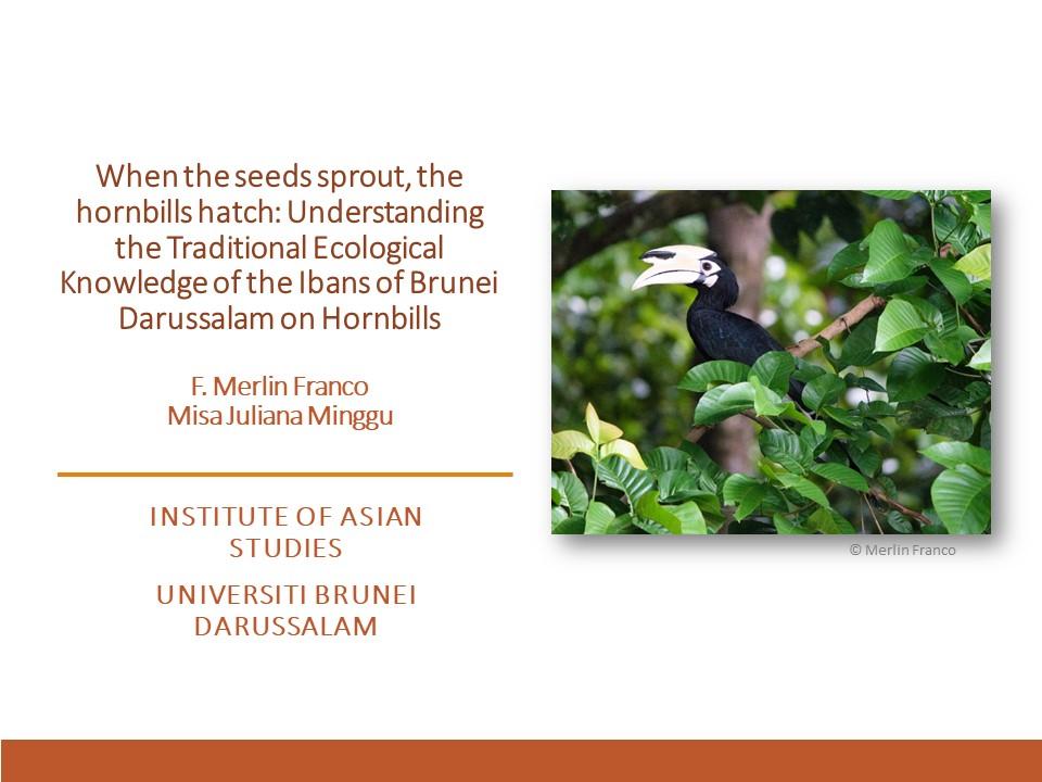 Franco on Hornbills in Brunei